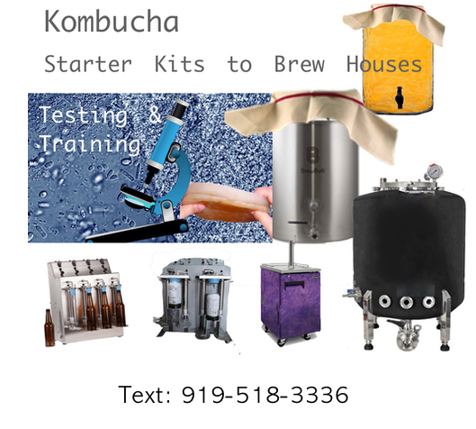 kombucha-sales-testing-consulting.jpg