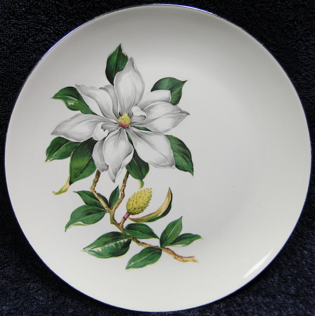 Homer Laughlin White Magnolia RY206