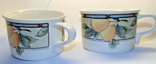 Mikasa Intaglio Garden Harvest Mugs Cups CAC29 Set of 2 | DR Vintage Dinnerware and Replacements