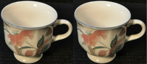 Mikasa Silk Flowers Footed Tea Cups F3003 Set of 2 | DR Vintage Dinnerware and Replacements
