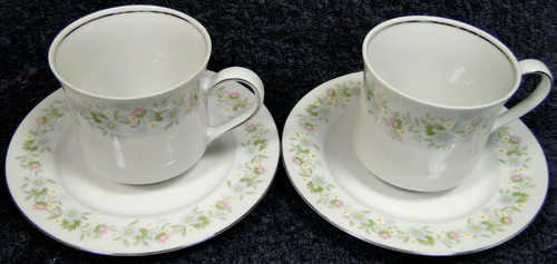 Johann Haviland Bavaria Forever Spring Tea Cup Saucer Sets 2 | DR Vintage Dinnerware and Replacements