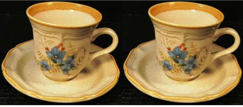 Mikasa Day Dreams Tea Cup Saucer Sets Garden Club EC461 2 | DR Vintage Dinnerware and Replacements