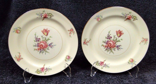 "Household Institute Priscilla Salad Plates Nautilus 8"" Set of 2 