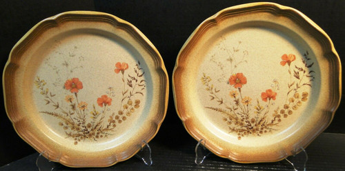 """Mikasa Whole Wheat Jardiniere Dinner Plates 10 3/4"""" E8016 Set of 2   DR Vintage Dinnerware and Replacements"""