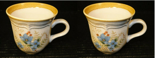 Mikasa Day Dreams Tea Cups Garden Club EC461 Set of 2 | DR Vintage Dinnerware and Replacements