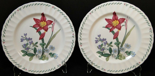 """Mikasa Summer Symphony Dinner Plates 10 3/4"""" CAJ14 Maxima Floral Set 2 