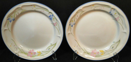 "French Garden Dinner Plates 10 5/8"" Genuine Stoneware Thailand Set 2 