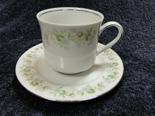 Johann Haviland Bavaria Forever Spring Tea Cup Saucer Set Excellent
