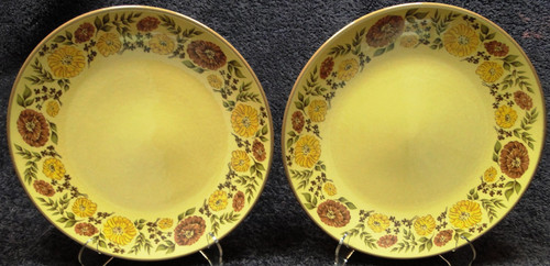 "Taylor Smith Taylor Indian Summer Dinner Plates 10 1/2"" Yellow Set 2 Excellent"