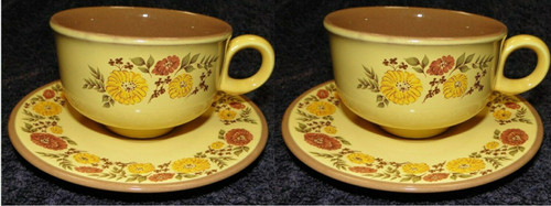 Taylor Smith Taylor Indian Summer Tea Cup Saucer Sets Yellow Brown 2 | DR Vintage Dinnerware and Replacements