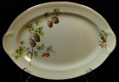 """Taylor Smith Taylor Pine Cone Oval Serving Platter 11 3/4"""" TST 1649 Excellent"""