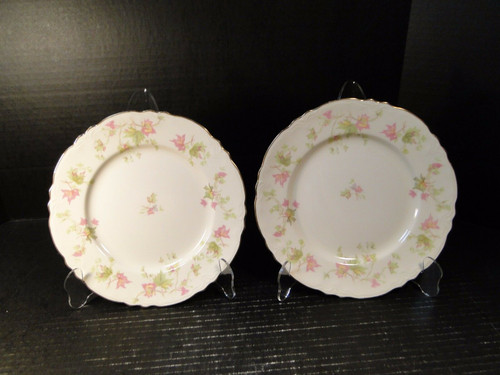 Homer Laughlin Maple Leaf Luncheon Plates 9 1/4 Republic R9524 Set of 2 | DR Vintage Dinnerware Replacements