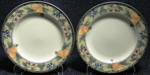 "Mikasa Garden Harvest Intaglio Salad Plates 8 3/8"" CAC29 Orange Set 2 | DR Vintage Dinnerware Replacements"