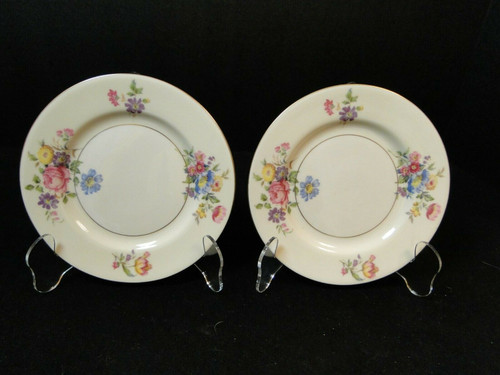 Theodore Haviland NY Pasadena Bread Plates 6 1/4 Set of 2 | DR Vintage Dinnerware and Replacements