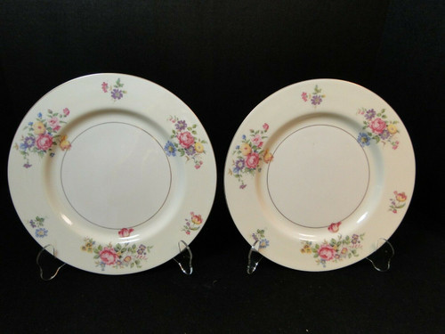 "Theodore Haviland NY Pasadena Dinner Plate 10"" Set of 2 