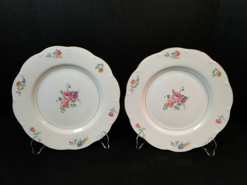 "Theodore Haviland NY Chapelle Dinner Plates 10 1/4""  Set of 2 