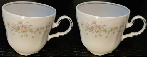 Johann Haviland Floral Splendor Bavarian Tea Cup Mugs Set of 2 | DR Vintage Dinnerware Replacements