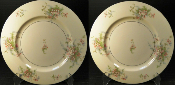 """Theodore Haviland NY Apple Blossom Dinner Plates 10 1/8"""" Set of 2 
