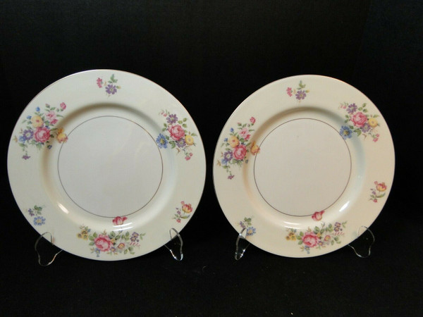 """Theodore Haviland NY Pasadena Dinner Plate 10"""" Set of 2 