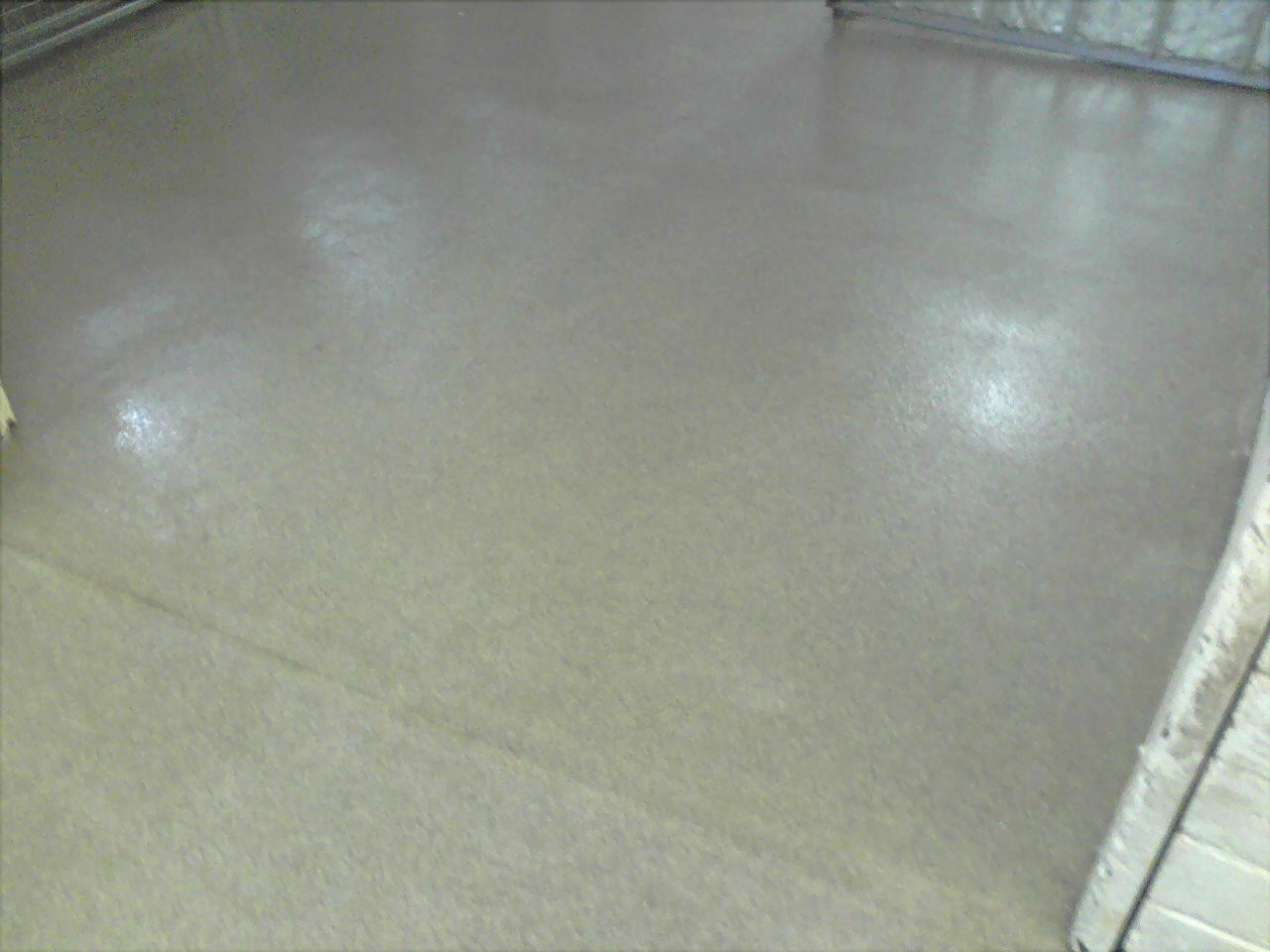 Floor after washing with SealGreen Kennel Cleaner