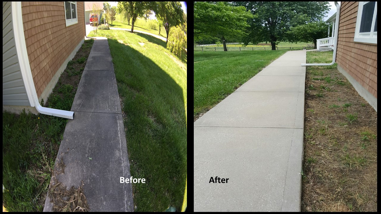 SealGreen Mold and Mildew Cleaner used to clean 25 year old concrete main walkway