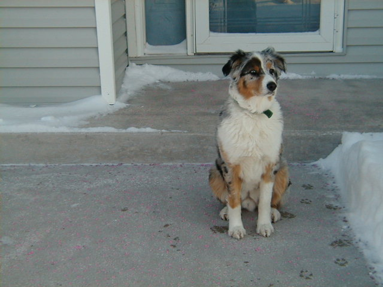 Snow and Ice Melter A Superior Product For Concrete safe for pets