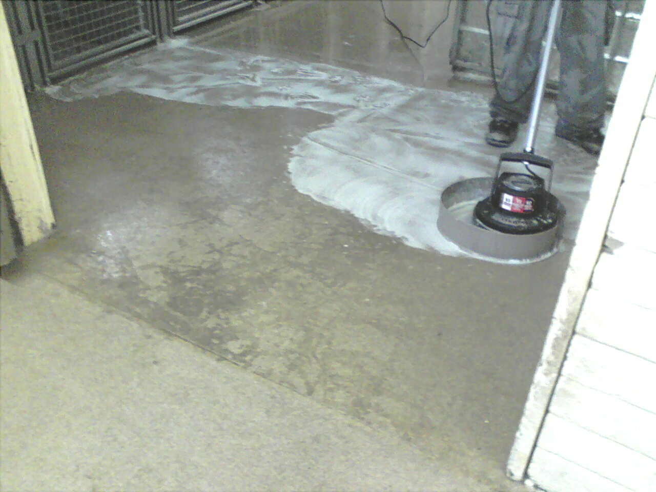 Scrubbing a Kennel floor using SealGreen Kennel cleaner