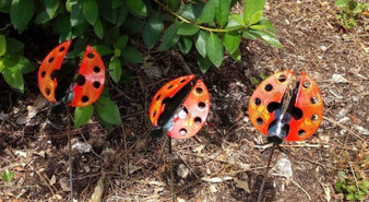 Handcrafted Metal Red Black Ladybug Garden Plant Sticks Group of 3