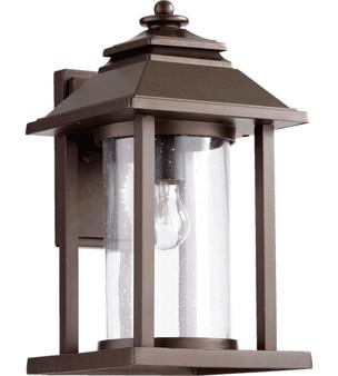 Crusoe 1 Light Outdoor Wall Lantern in Oiled Bronze
