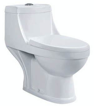 Select One Piece Round Front Toilet in White (06UB-300)