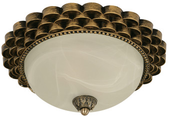 22444 2 Light Ceiling Light in Brass