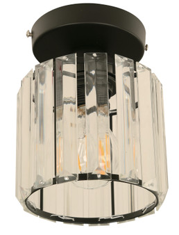 22445 1 Light Ceiling Light in Black