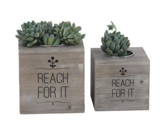 Mini Wood Planters (Set of 2)