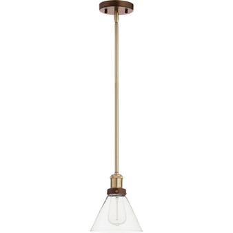 Fort Worth 1 Light Pendant in Aged Brass