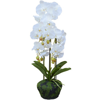 """Potted Orchids 23.6"""" Artificial Plant In White"""