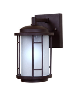 7767 Outdoor Wall Sconce in Bronze