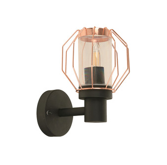 21167 1 Light Outdoor Wall Sconce in Black