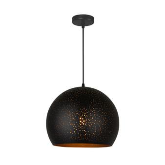 SP4553-Pendant Light in Black
