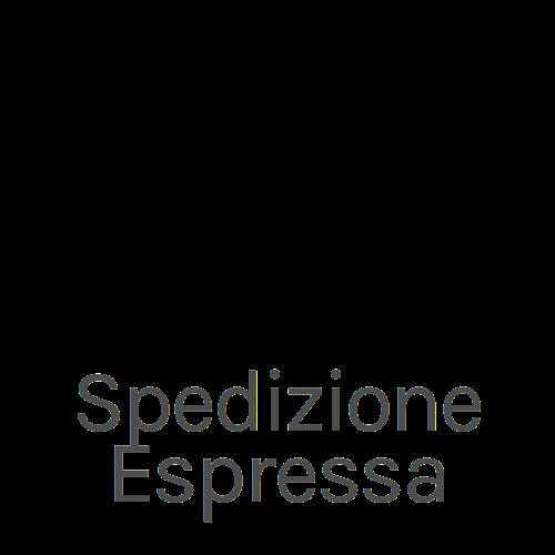 spedizione-espressa.png