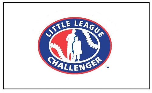Challenger Division Logo Flag View Product Image
