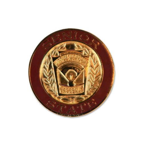 Senior Baseball State Pin View Product Image