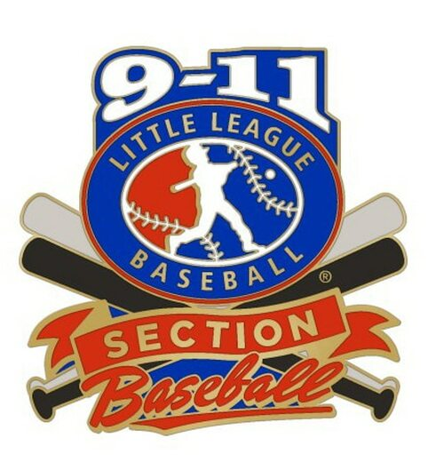 9-11 LLBB Section Pin View Product Image