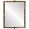 Flat Mirror - Athena Rectangle Frame - Champagne Silver