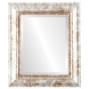 Beveled Mirror - Chicago Rectangle Frame - Champagne Silver