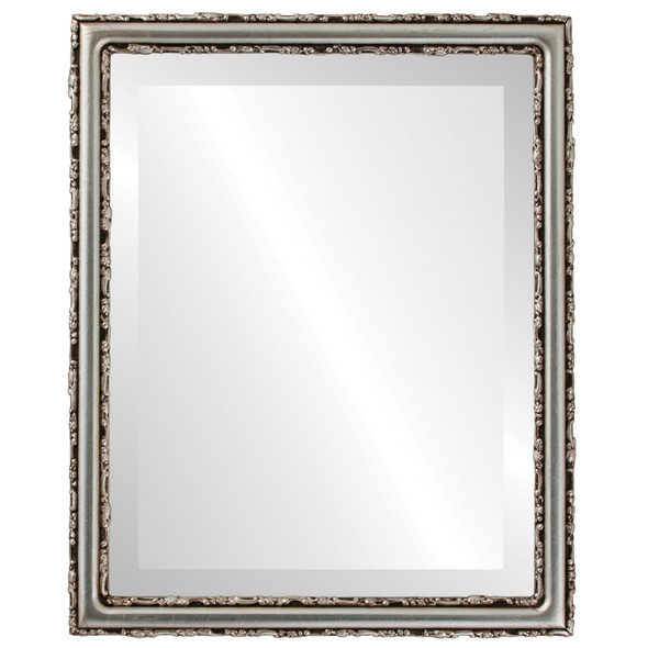 Beveled Mirror - Virginia Rectangle Frame - Silver Leaf with Brown Antique