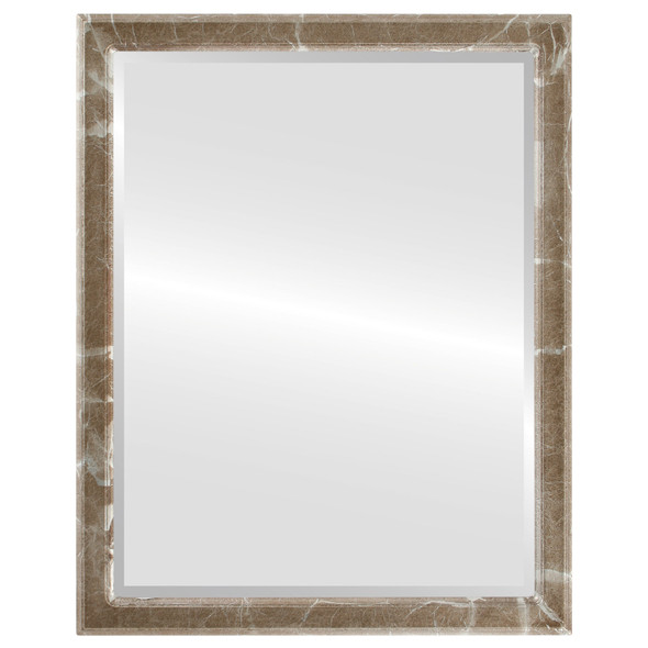 Beveled Mirror - Toronto Rectangle Frame - Champagne Silver