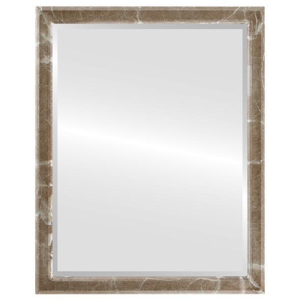 Beveled Mirror - Toronto Rectangle Frame - Champagne Silver