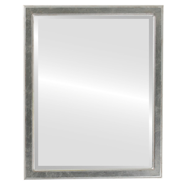 Beveled Mirror - Toronto Rectangle Frame - Silver Leaf with Brown Antique