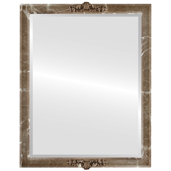 Beveled Mirror - Athena Rectangle Frame - Champagne Silver