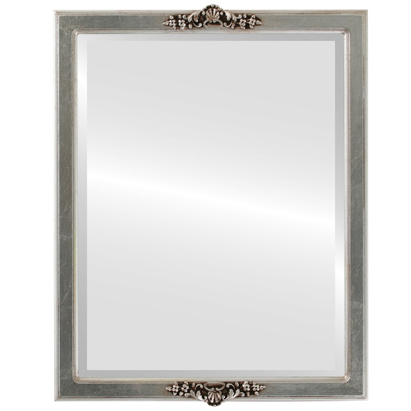 Beveled Mirror - Athena Rectangle Frame - Silver Leaf with Brown Antique